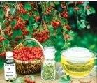 Produse naturiste ADSERV - TINCTURA PADUCEL 50ml ADSERV