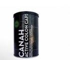 Produse naturiste CANAH INTERNATIONAL - FIBRE DIN SEMINTE DE CANEPA 300g CANAH