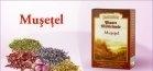 Produse naturiste DACIA PLANT - CEAI MUSETEL 50g DACIA PLANT