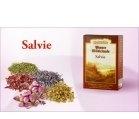 Produse naturiste DACIA PLANT - CEAI SALVIE FRUNZA 50gr DACIA PLANT