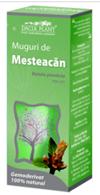 Produse naturiste DACIA PLANT - MESTEACAN MUGURI 50ml DACIA PLANT