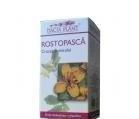 Produse naturiste DACIA PLANT - ROSTOPASCA 60cpr DACIA PLANT