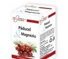 Produse naturiste FARMACLASS - PADUCEL & MAGNEZIU 30cps FARMACLASS