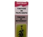 Produse naturiste FAVISAN - TINCTURA TALPA GASTII 50ml FAVISAN