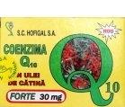 Produse naturiste Hofigal - COENZIMA Q10+ULEI CATINA FORTE 40cps(moi) HOFIGAL