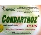 Produse naturiste Hofigal - CONDARTROZ PLUS 60cpr HOFIGAL