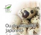 Produse naturiste MEDICA - OU PREPELITA JAPONEZA 30cps BLISTER MEDICA