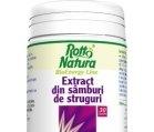 Produse naturiste ROTTA NATURA - EXTRACT SAMBURI DE STRUGURI 30cps ROTTA NATURA