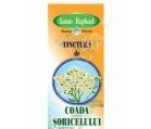 Produse naturiste SANTO RAPHAEL - TINCTURA COADA SORICELULUI 50ml SANTO RAPHAEL